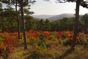 A beautiful vista point along the Talimena National Scenic Byway in southeast Oklahoma on a crisp fall day.