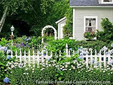 Fantastic country garden