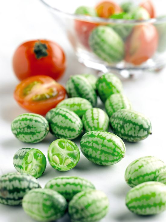 Cucamelon (Melothria scabra)  Fruit the the size of grapes and taste like cucumbers with a tinge of sourness.