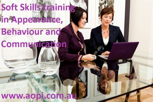 Soft Skills Training Academy of Professional Image - lots of course outlines, objectives and resources: use links at bottom of page
