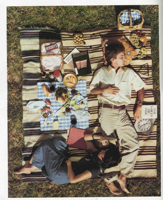 Vintage Picnic- photo from September 1976 issue of Scientific American