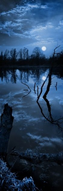 I've fished many moonlit night's that looked like this , love topwater night fishing!