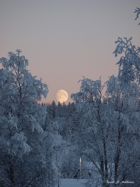Winter in Sweden...