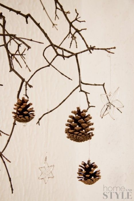 Do it yourself (DIY) :: Natural Christmas ornaments for every home