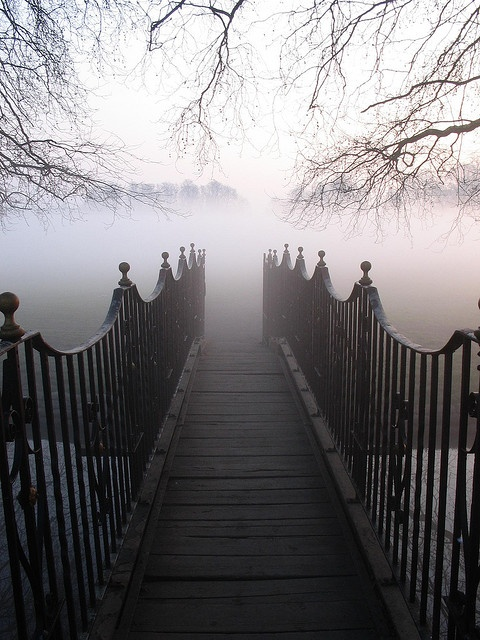 into the mist....