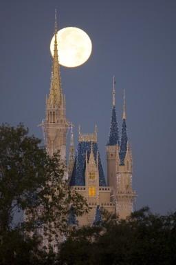 walt disney world, cinderella castle, full moon, magic