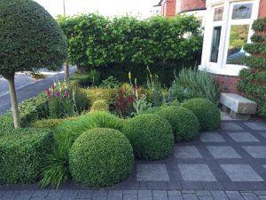 my cheshire garden