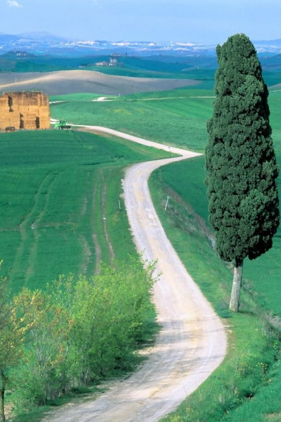 Country Road - Tuscany