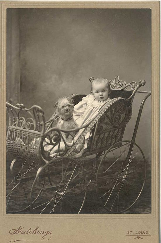 #vintage #photography -- Such a cute image of a young child with their dog. Such a classic...