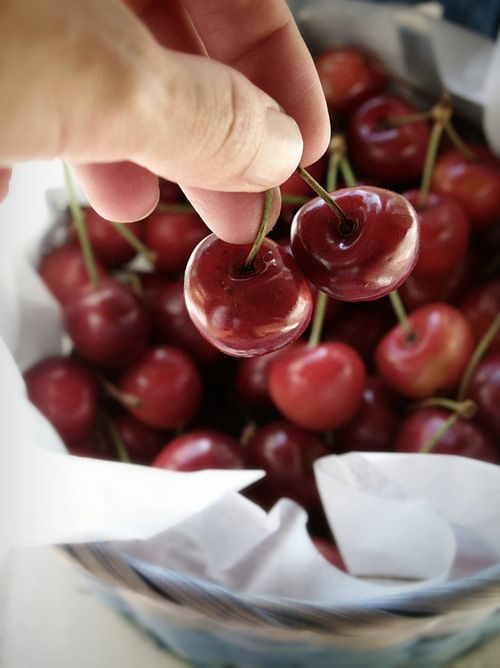 The perfect snack #cherries #red #fruit