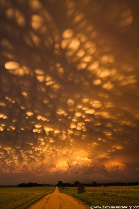 Intense mammatus form over eastern Nebraska August 21, 2007 behind a line of storms.