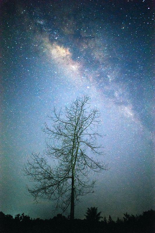 Milky way night #cosmos #universe #milkyway