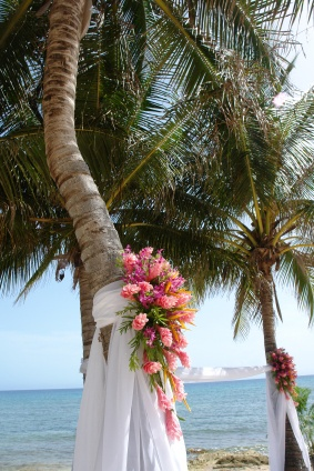 nice idea for palm tree decorations and accents