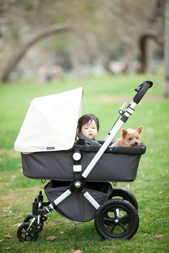 cute baby (& pup!) photo
