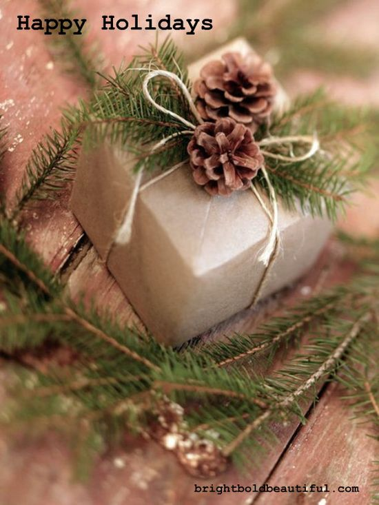 Happy Holidays brightboldbeautif...
