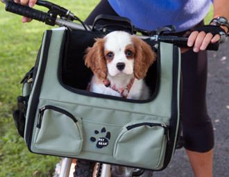 The Traveling Pet / A bag/basket for your dog to ride in on your bike!