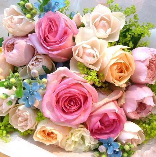 ?Roses