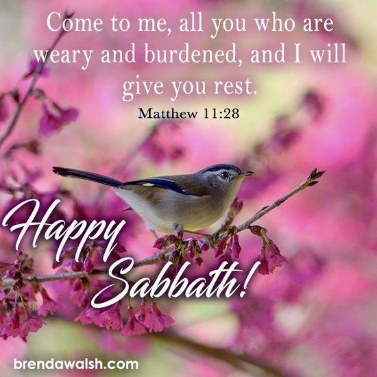 76 Happy Sabbath ❤️❤️❤️ ideas   happy sabbath, sabbath, sabbath quotes