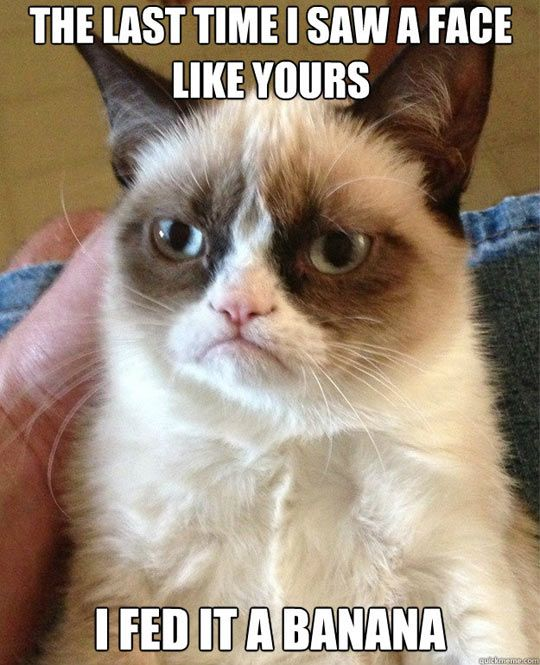 Last time I saw a face like yours… #GrumpyCat #Meme