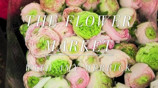 Brooklyn-based florist and flower designer Amy Merrick takes us on a behind-the-scenes tour of New York's famous flower district! Amy, an old pro when it comes to navigating this large strip of flower shops, shares her five tips for what to do at the flower market. #video #flowers