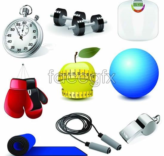 Physical exercise equipment vector