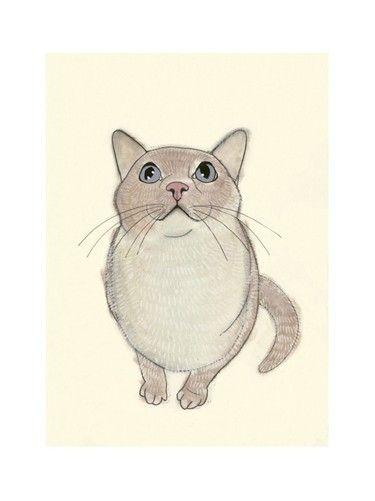 Cat on Etsy,