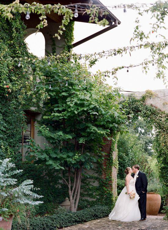 Ali Harper Wedding Photography