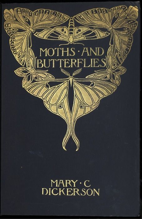 Moths & Butterflies (book cover). Possibly a Margaret Armstrong binding.