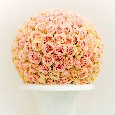 Toscannini roses #flowers repined by www.MoraApproved.com