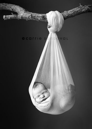 Newborn Photo... We have to do this