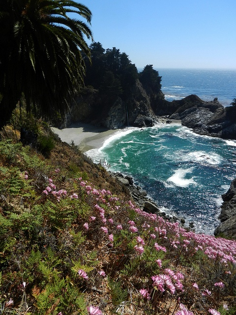 Julia Pfeiffer Burns State Park, along the PCH LOVE IT! Best road trip is along the Pacific Coast from San Diego to Long Beach, Wa