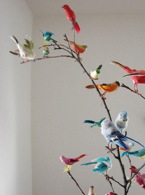I love birds.