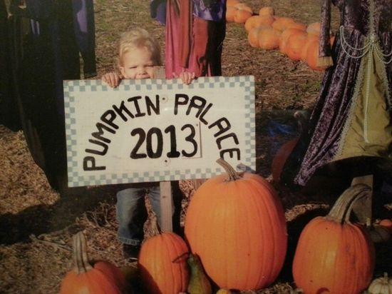 Pumpkin baby boy