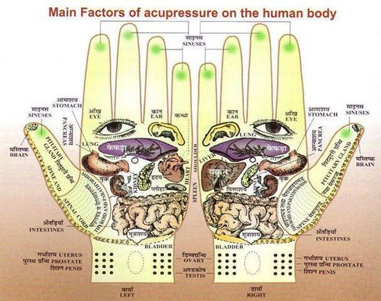Main factors of acupressure on human body