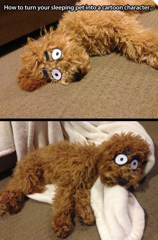 Cartoon dog…
