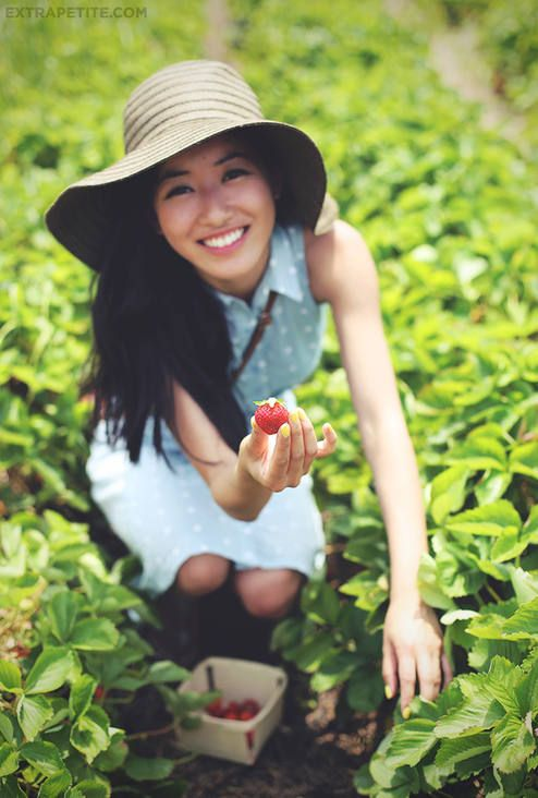 Summer Weekends - Fresh Fruit Picking  by Extra Petite