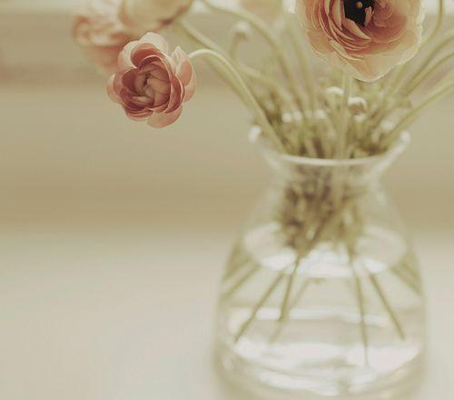 pretties in a vase