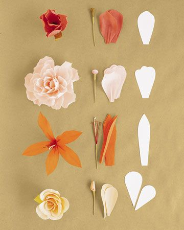 All kinds of paper flowers. Hooray!