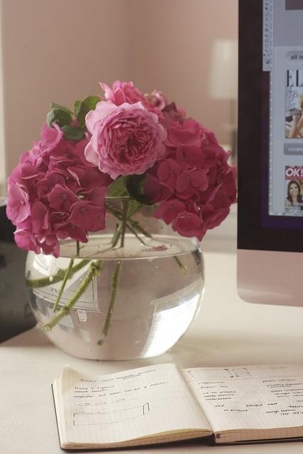 English roses & pink hydrangea