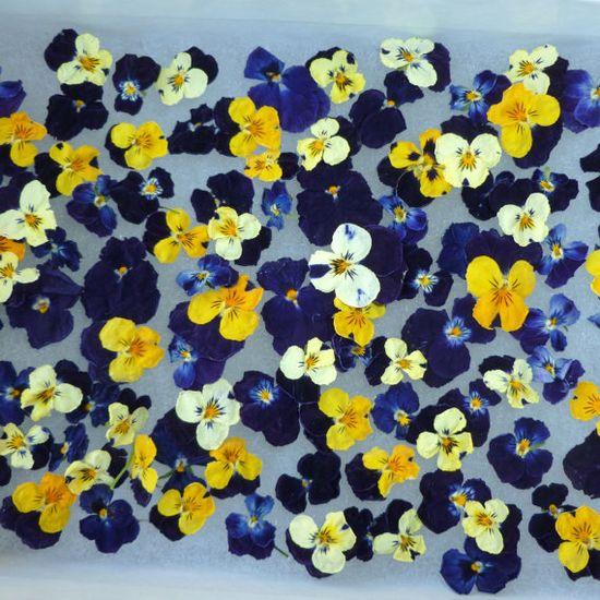 Confetti Wedding Decorations 100 dried Flowers. $10.00, via Etsy.
