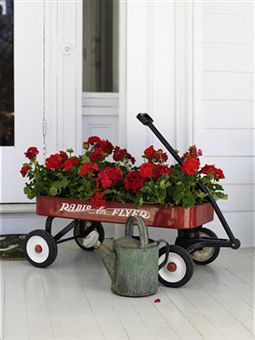 Geraniums in a Radio Flyer Wagon.  I have my sisters lil red wagon, how cute this would be.
