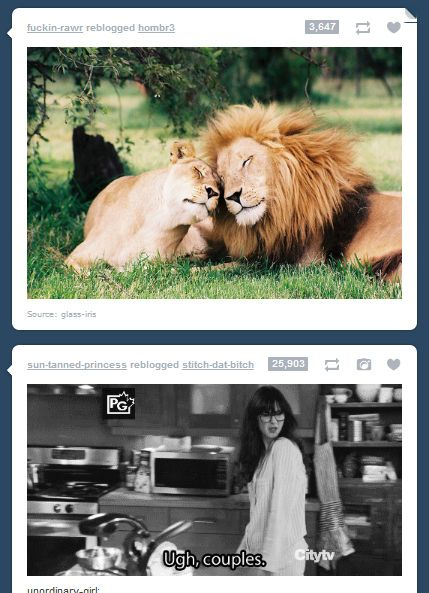 25 Moments Of Tumblr Serendipity