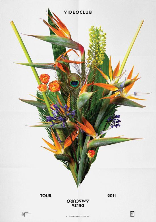 Birds of Paradise digital bouquet