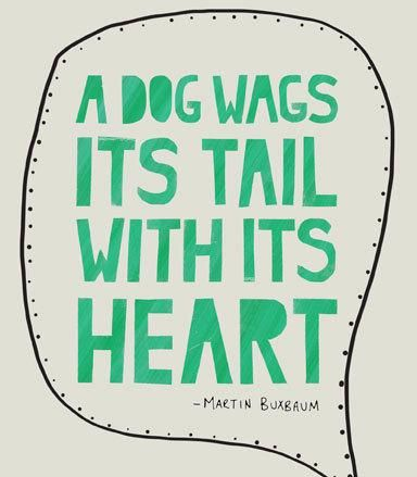 A dog wags its tail with its heart. REPIN if you love this quote!