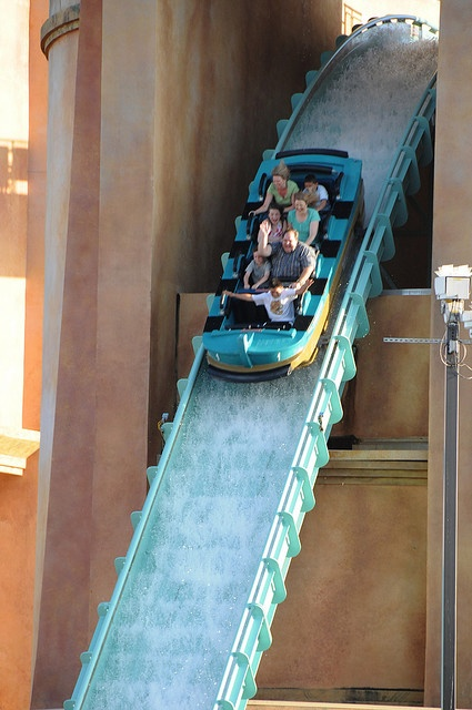 The rides are one of the beat things at the park! Don't miss out on them! Sea World, San Diego.