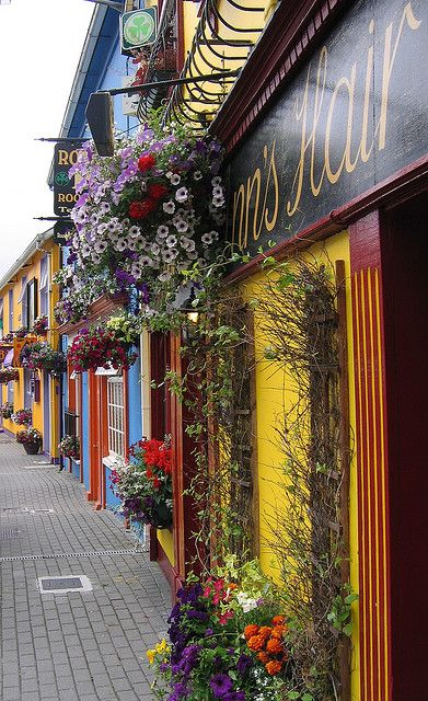 Irish culture and Ireland have always grabbed my attention. I went once when I was 8 and it was the most spectacular place I have ever been. Experiencing other cultures and places around the world is not only something I enjoy but a very important aspect to tolerance around the world.
