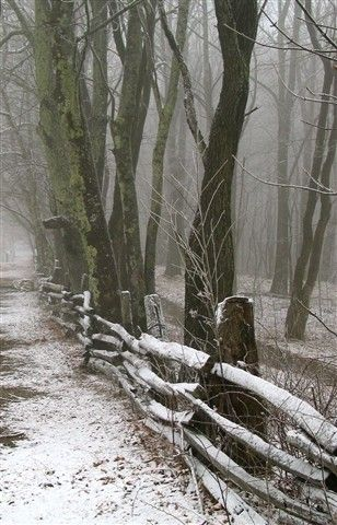 winter;;