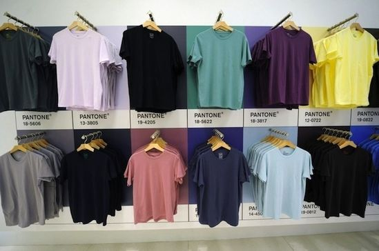 t shirt display