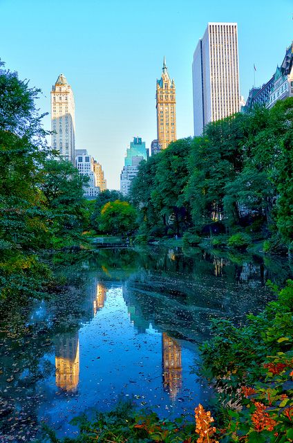 central park in new york city. via flickr