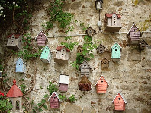 Love the wall itself...but really love all those birdhouses!
